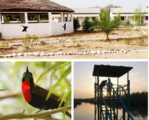 Morgan Kunda Lodge launch as first holiday accommodation, offering exclusive bird watching access in Northern Gambia